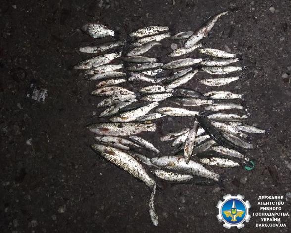 Протягом дня зафіксовано порушень на майже 50 тис. грн збитків, - Азовське басейнове управління