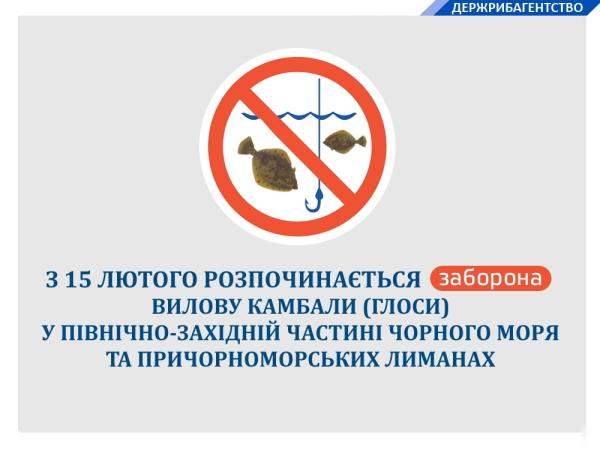 З 15 лютого в Чорному морі та причорноморських лиманах встановлюється заборона на вилов камбали (глоси)