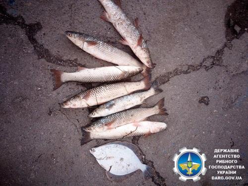 Протягом дня викрито порушень майже на 16 тис. грн збитків, - Азовське басейнове управління