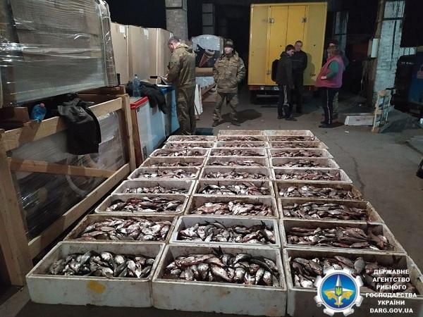 У Кривому Розі зафіксовано незаконне перевезення 713 кг риби, - рибоохоронний патруль Дніпропетровщини