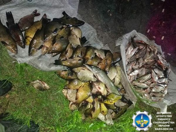 За допомогою 10 сіток порушники виловили 38 кг риби на понад 21 тис. грн збитків, – Сумський рибпатруль