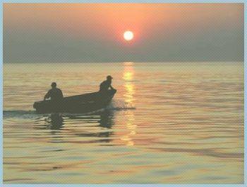 Більше 10 млн українців 10 липня святкуватимуть День рибалки