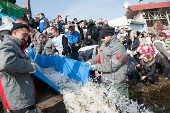 За 2015 рік до водойм України вселено більше 9 млн екземплярів риби