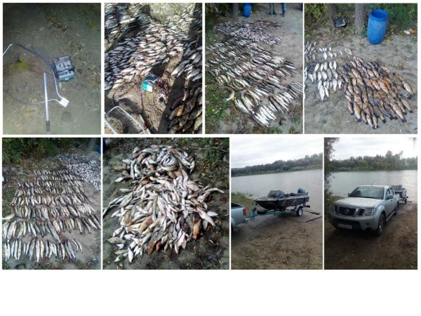 На Чернігівщині браконьєри, використовуючи електровудку, завдали 97 тис. грн збитків