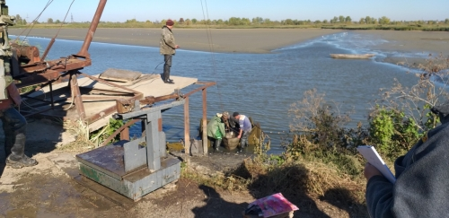 В озера Ялпуг та Кугурлуй вже вселено понад 25 тонн риби