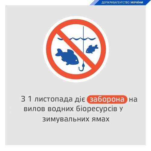 З 1 листопада встановлено заборону на вилов риби у зимувальних ямах