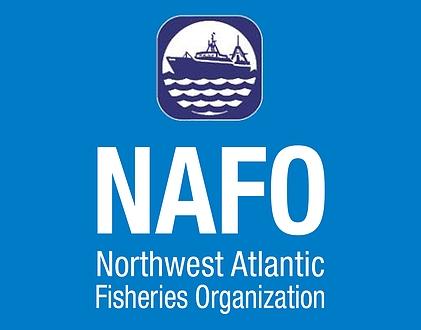 Держрибагентство запрошує підприємців до освоєння квот на вилов морського окуня в Атлантичному океані