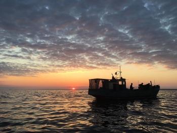 За час роботи рибного патруля Київщини промисловий вилов риби збільшився майже у 1,5 рази (Інформацію оновлено)
