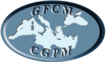 ГКРС реалізує в Україні масштабний проект із наукових досліджень Чорного моря