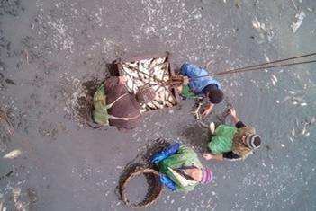 22-29 листопада проведено зариблення Дніпродзержинського водосховища, Дніпровсько-Бузької естуарної системи та річки Мурафа