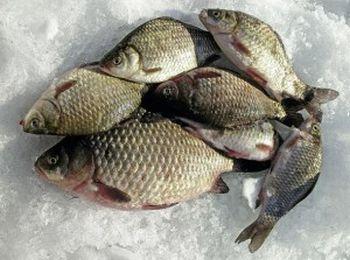 Громадськість Кіровоградщини долучилася до рибоохоронної роботи