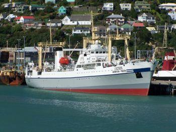 13 млн грн дивідендів від діяльності  державного океанічного флоту вперше  надійшли  до бюджету країни