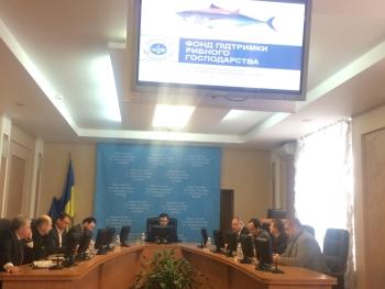 В 2017 році в Україні вперше може запрацювати європейська модель підтримки рибного господарства