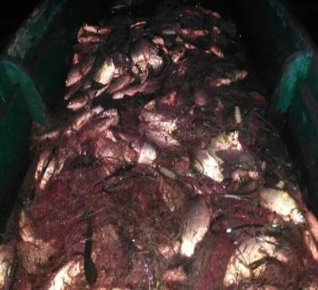 Управління оперативного реагування «Рибоохоронний патруль» зафіксувало порушень на 1,5 млн грн.