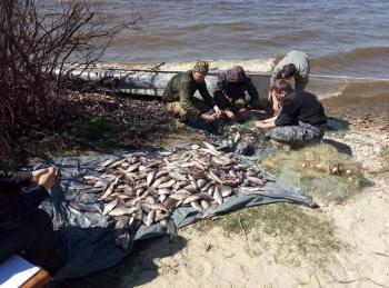 Рибні патрульні Київщини зафіксували порушення зі збитками в 50 тис грн. в ландшафтного парку «Трахтемирів»