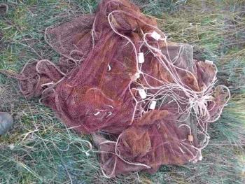Азоврибоохорона зафіксувала порушення зі збитками на суму 2,4 млн грн.