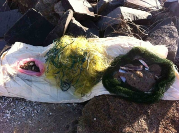 Чорноморський рибоохоронний патруль зафіксував збитки на 2,3 млн грн в Чорному морі