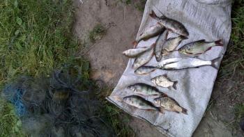 19 липня Київський рибоохоронний патруль затримав 24 порушника