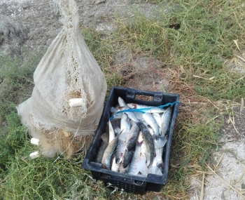 Азовський рибоохоронний патруль викрив два грубих порушення в затоці Сиваш