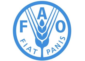 ФАО допоможе Україні у сфері безпеки рибних продуктів для ринків ЄС