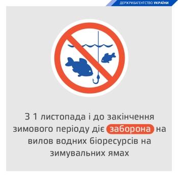 З 1 листопада в 21 області встановлено заборону на вилов риби на зимувальних ямах