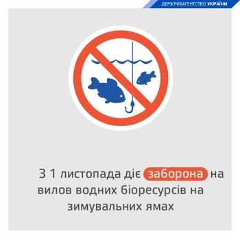 Житомирський та Донецький рибоохоронні патрулі розробили інтерактивні карти зимувальних ям